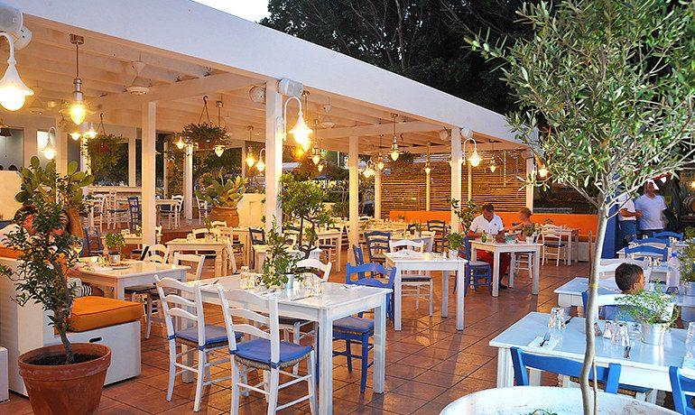 Napa Plaza Hotel platia meze greek cypriot restaurant
