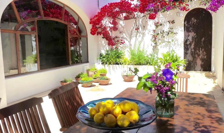 Hotel Ca´s Catala garden area