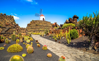 Lanzarote holidays for adults